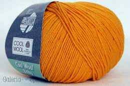 Cool Wool Baby -238 żółty